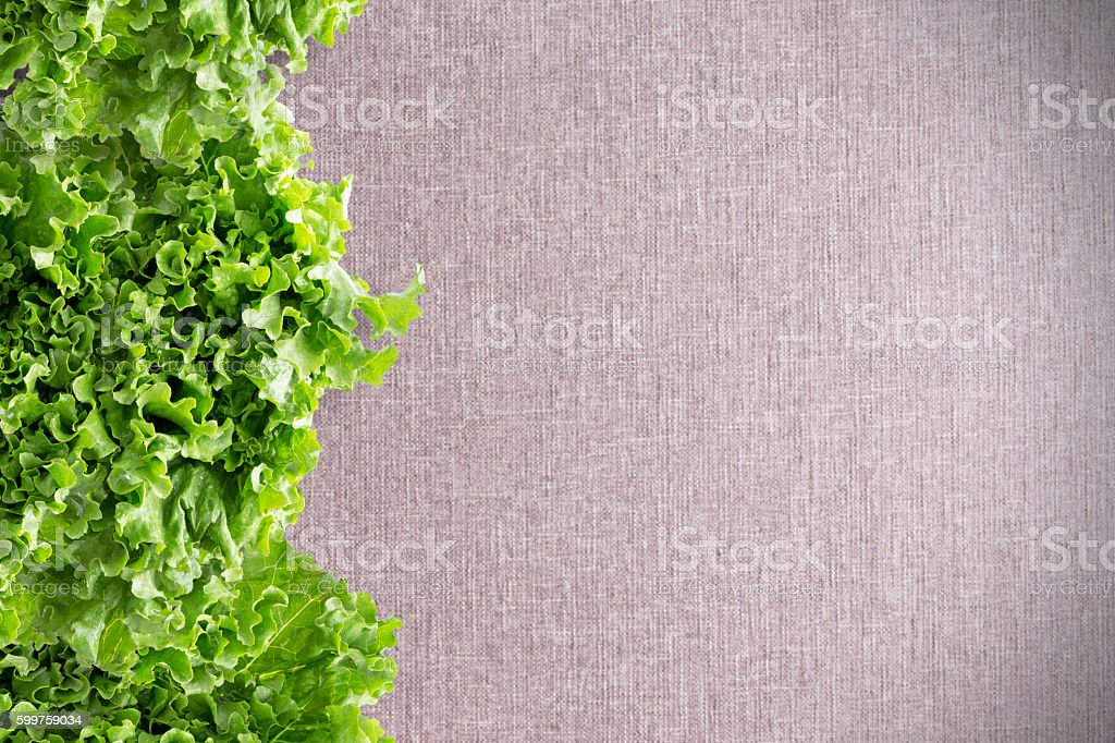 Border of crisp California lettuce on textile stock photo
