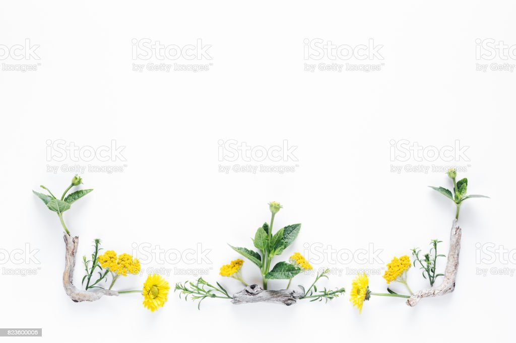 Border With Colorful Flowers stock photo