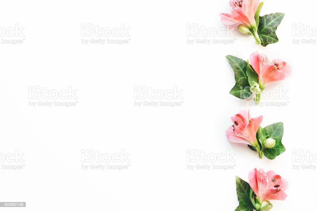 Border With Soft Flowers stock photo