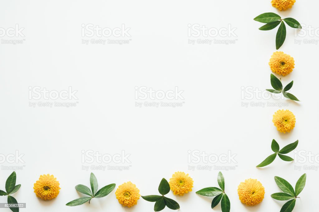 Border With Yellow Flowers And Green Leaves stock photo