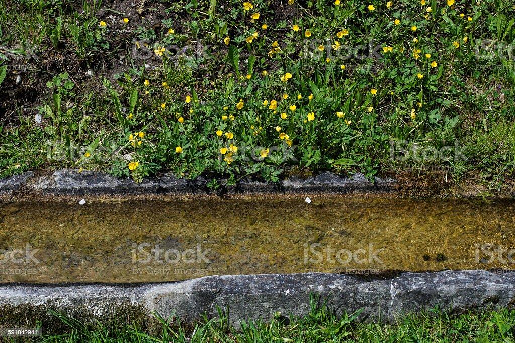 Bordered stock photo