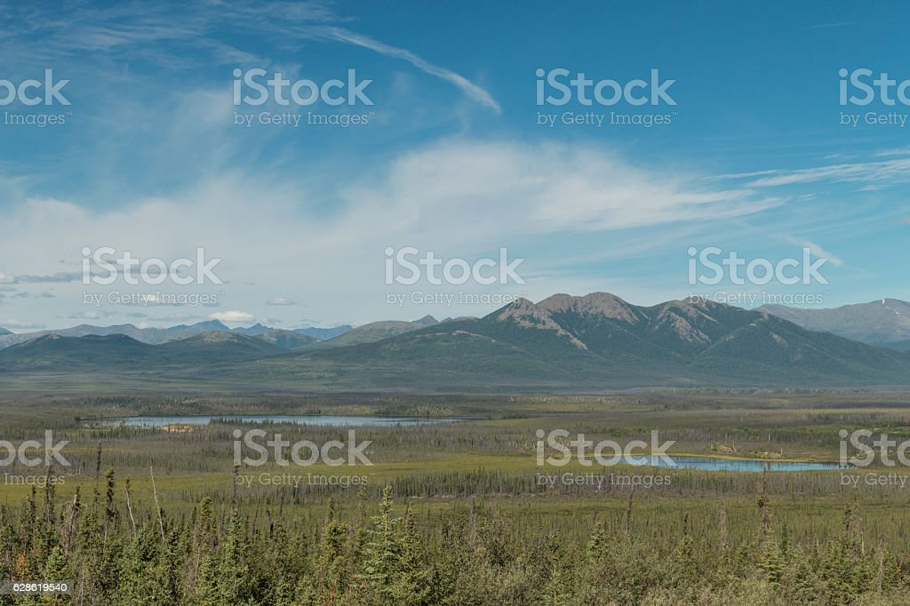 Boreal forest and the Brooks Range from the Dalton Highway. stock photo