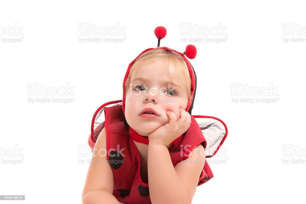 Bored Lady Bug stock photo