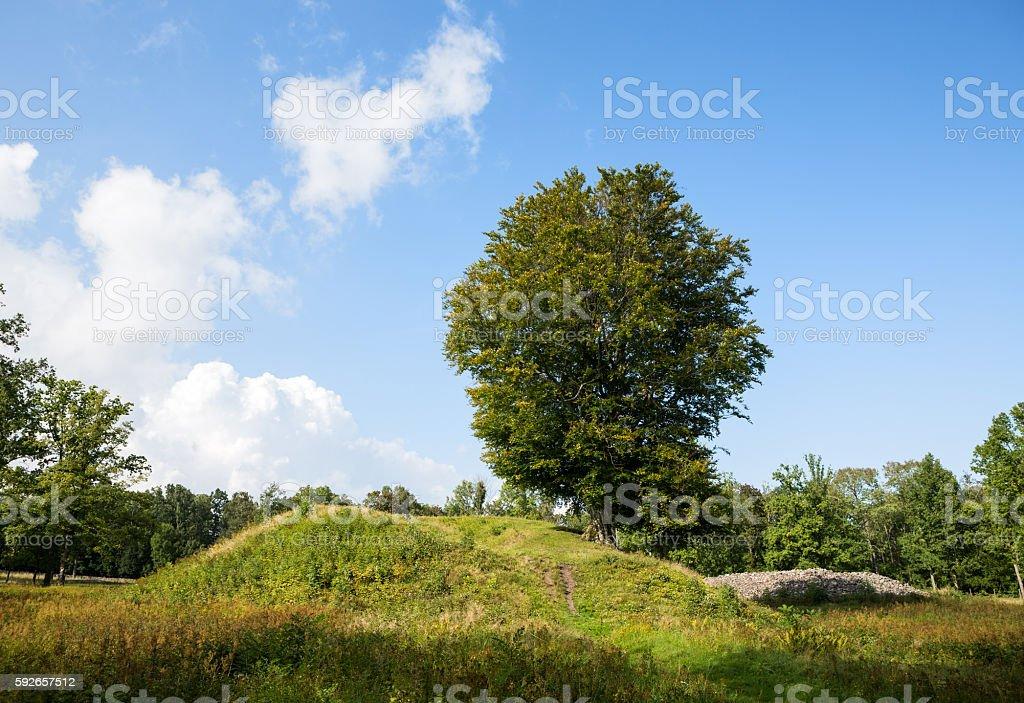 Borre burial mounds, Vestfold Norway stock photo