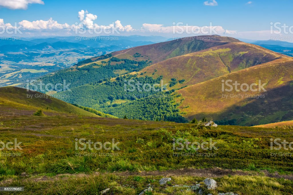 Borzhava ridge in Carpathian mountains in august stock photo