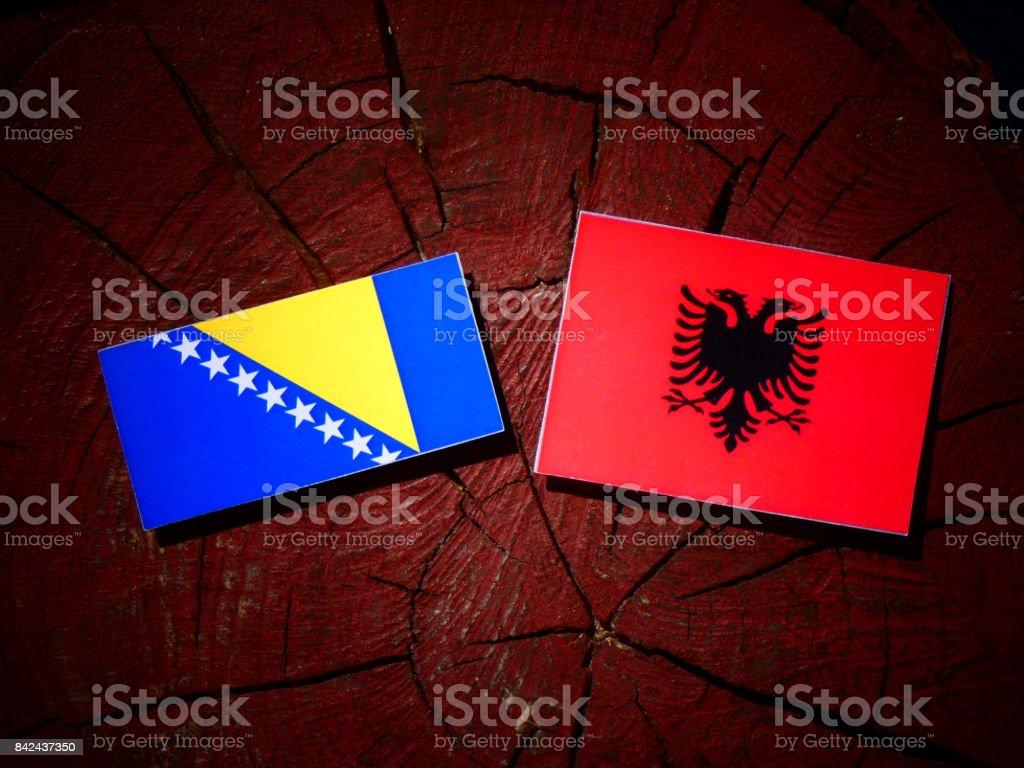 Bosnia and Herzegovina flag with Albanian flag on a tree stump isolated stock photo
