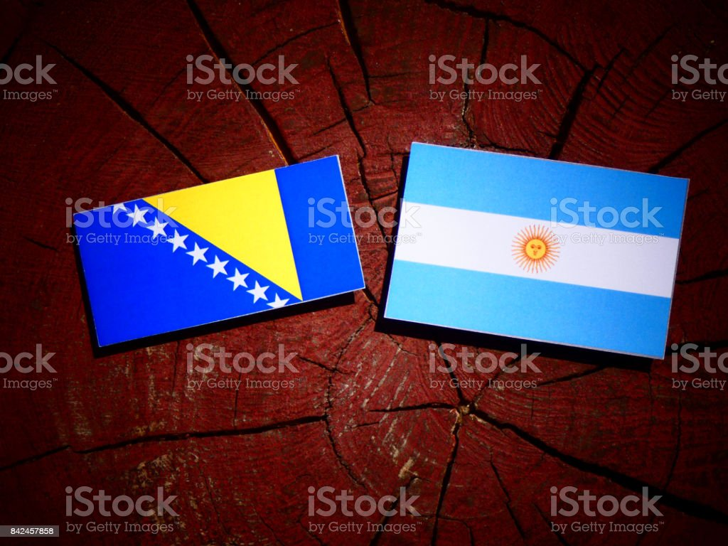Bosnia and Herzegovina flag with Argentinian flag on a tree stump isolated stock photo