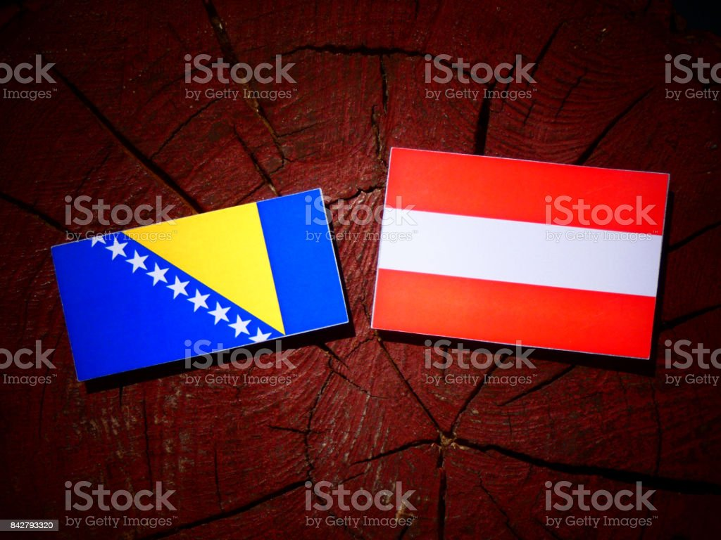 Bosnia and Herzegovina flag with Austrian flag on a tree stump isolated stock photo