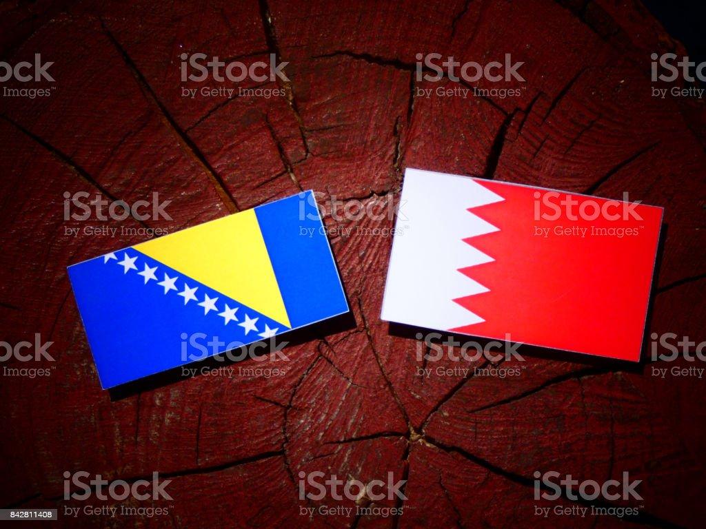 Bosnia and Herzegovina flag with Bahraini flag on a tree stump isolated stock photo