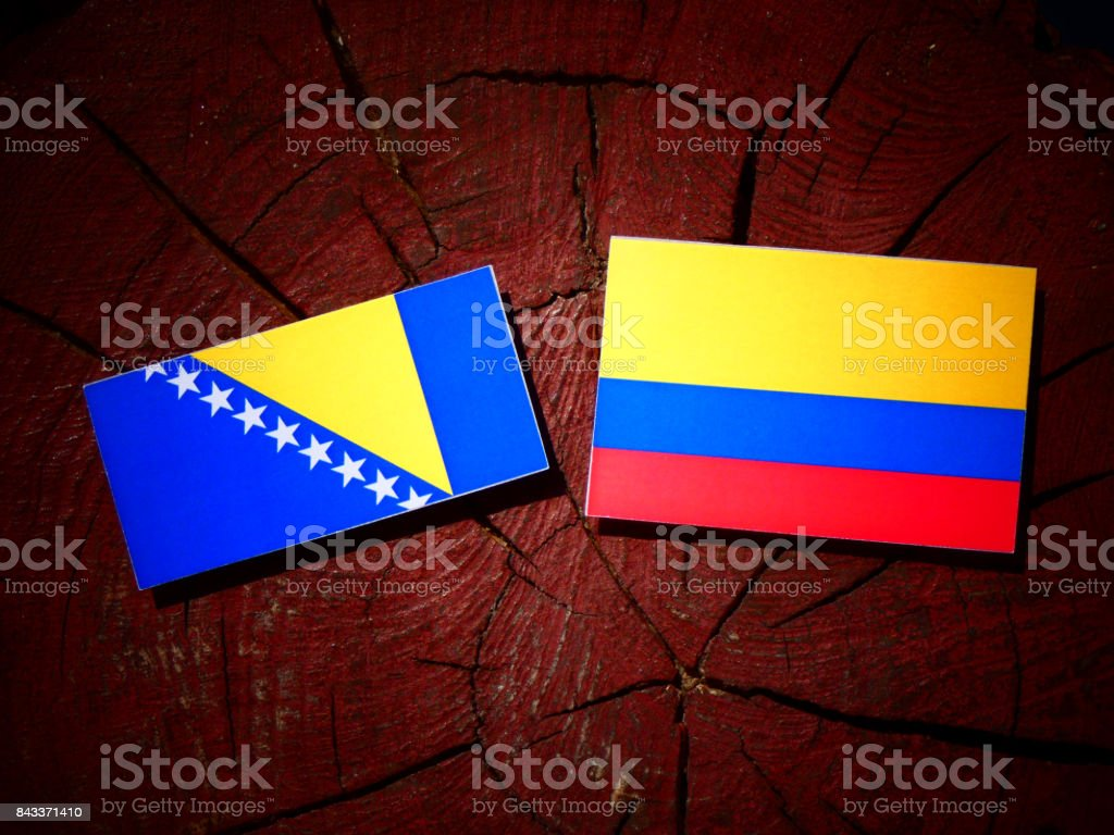 Bosnia and Herzegovina flag with Colombian flag on a tree stump isolated stock photo