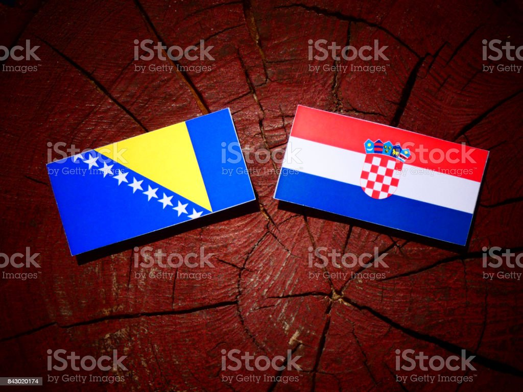 Bosnia and Herzegovina flag with Croatian flag on a tree stump isolated stock photo
