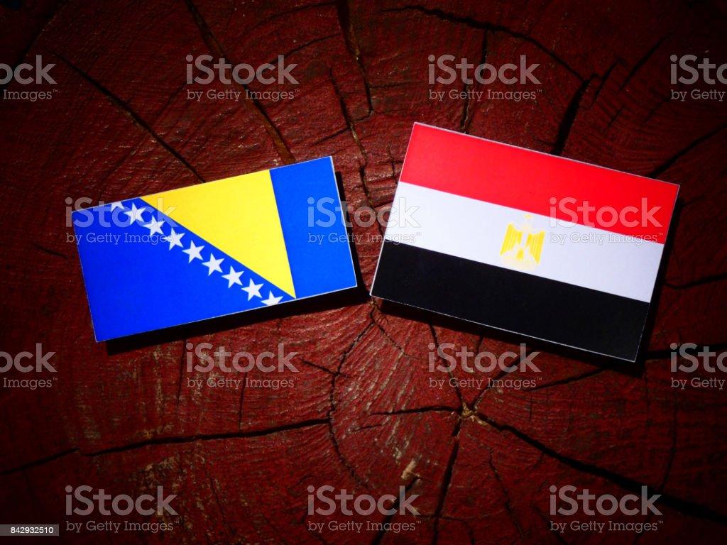 Bosnia and Herzegovina flag with Egyptian flag on a tree stump isolated stock photo