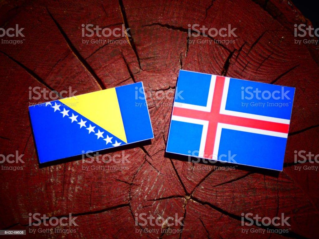 Bosnia and Herzegovina flag with Icelandic flag on a tree stump isolated stock photo