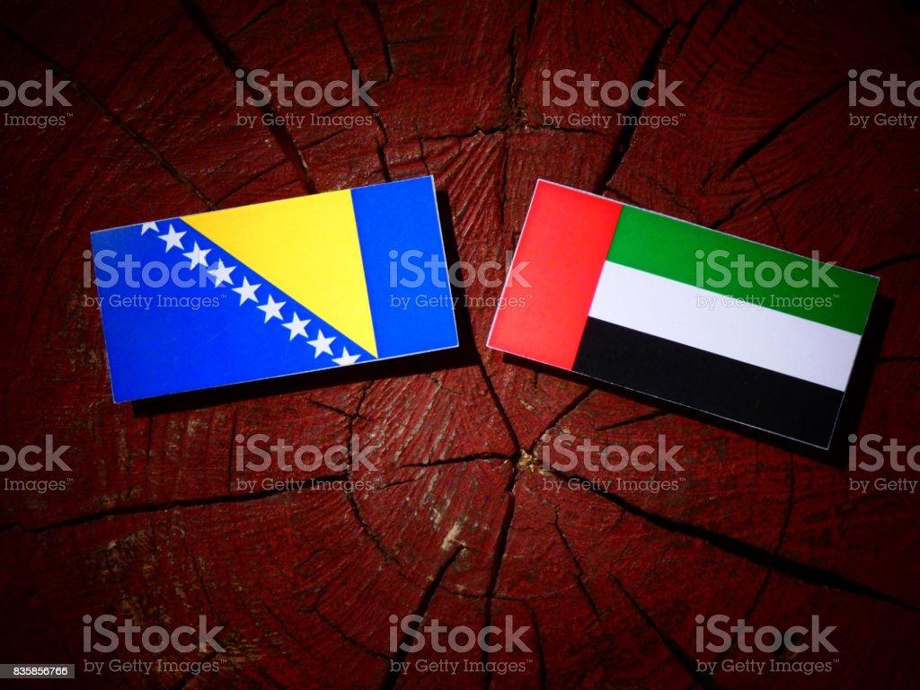 Bosnia and Herzegovina flag with United Arab Emirates flag on a tree stump isolated stock photo