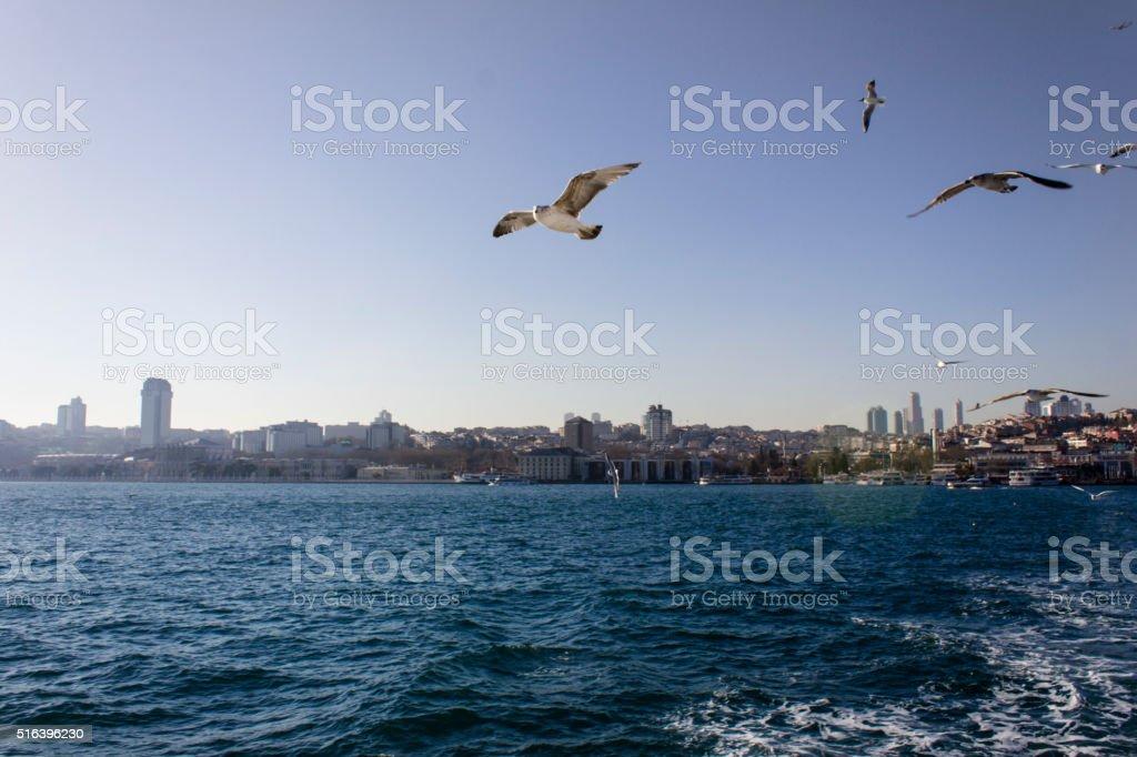 Bosphorus - Istanbul stock photo