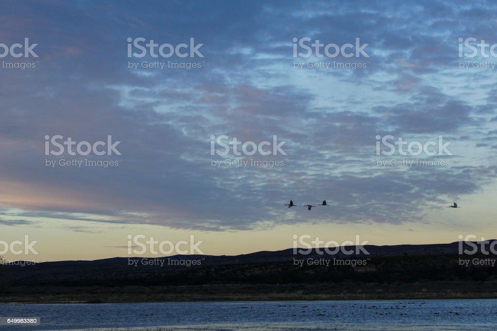 Bosque del Apache National Wildlife Refuge New Mexico stock photo