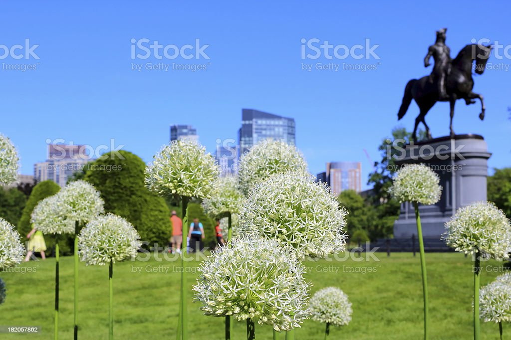Boston: Downtown royalty-free stock photo