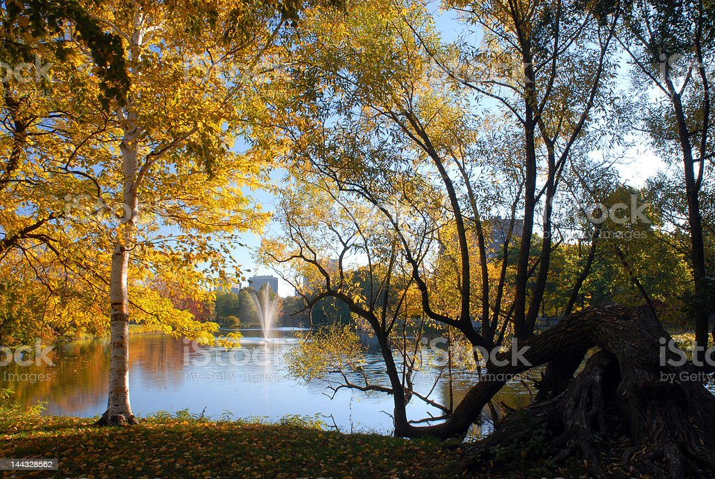Boston Esplanade Fountain and Foliage royalty-free stock photo