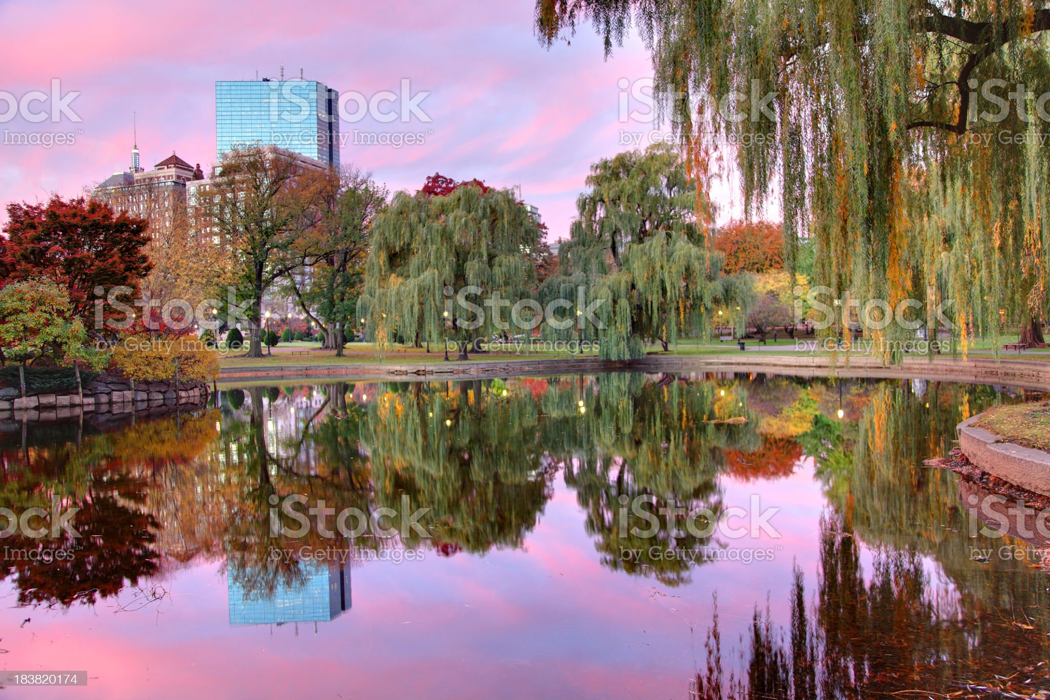 Boston Reflecting on a Small Pond royalty-free stock photo