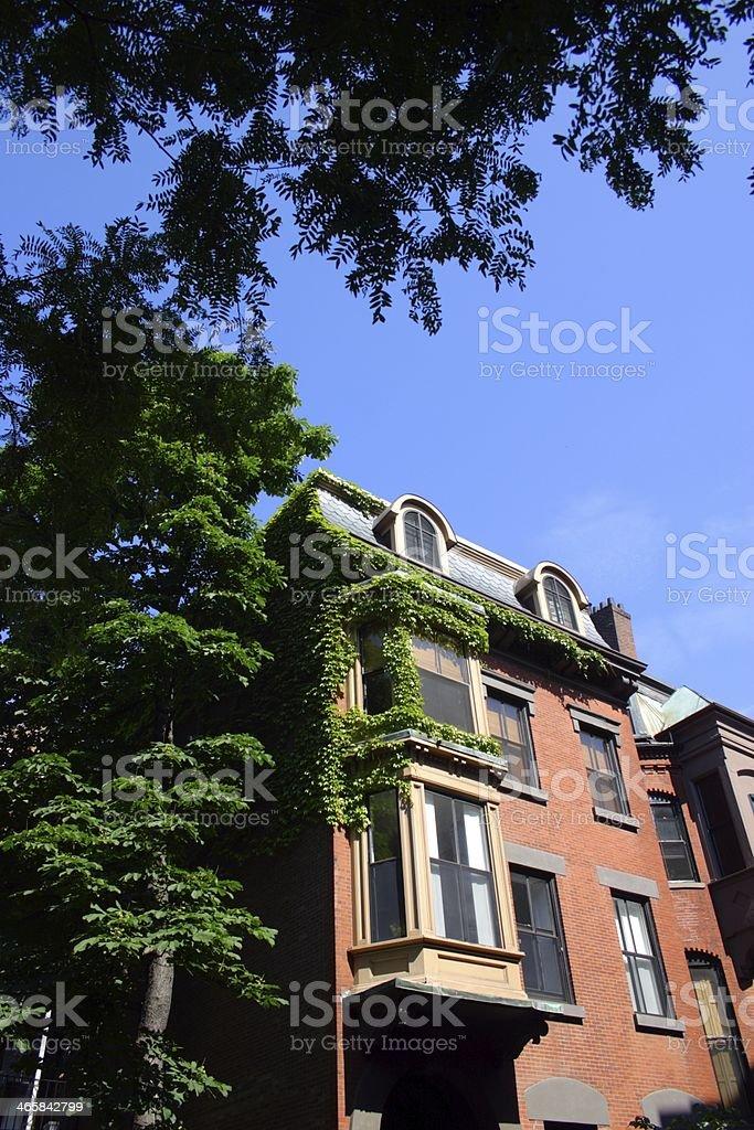 Boston, USA royalty-free stock photo