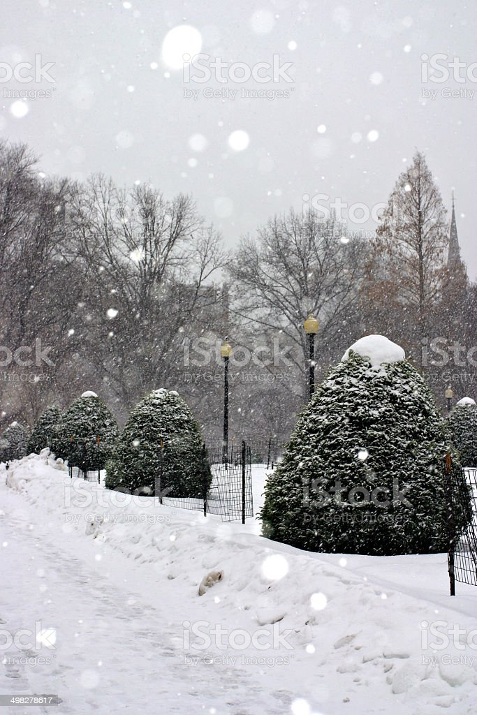 Boston Winter royalty-free stock photo