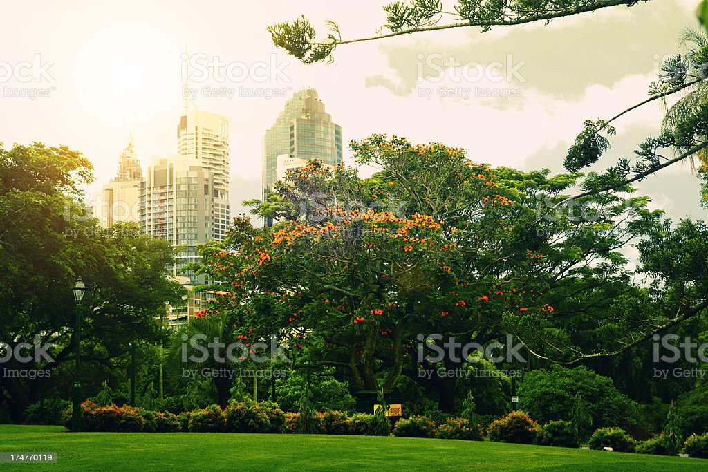 Botanic Gardens, Brisbane Australia stock photo