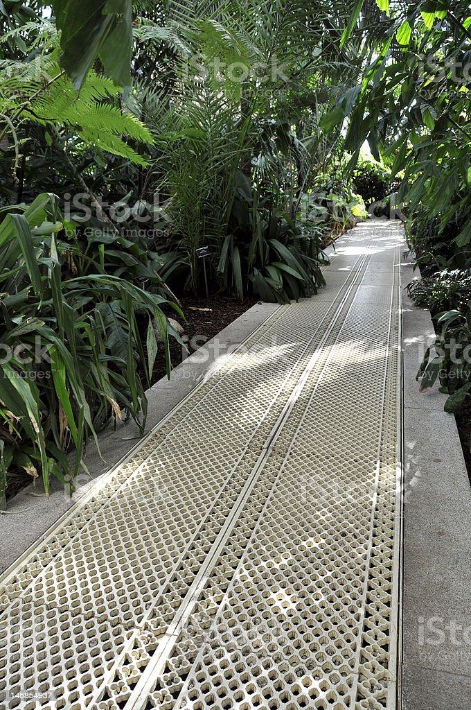 Botanische Gärten – Dublin, Irland Lizenzfreies stock-foto
