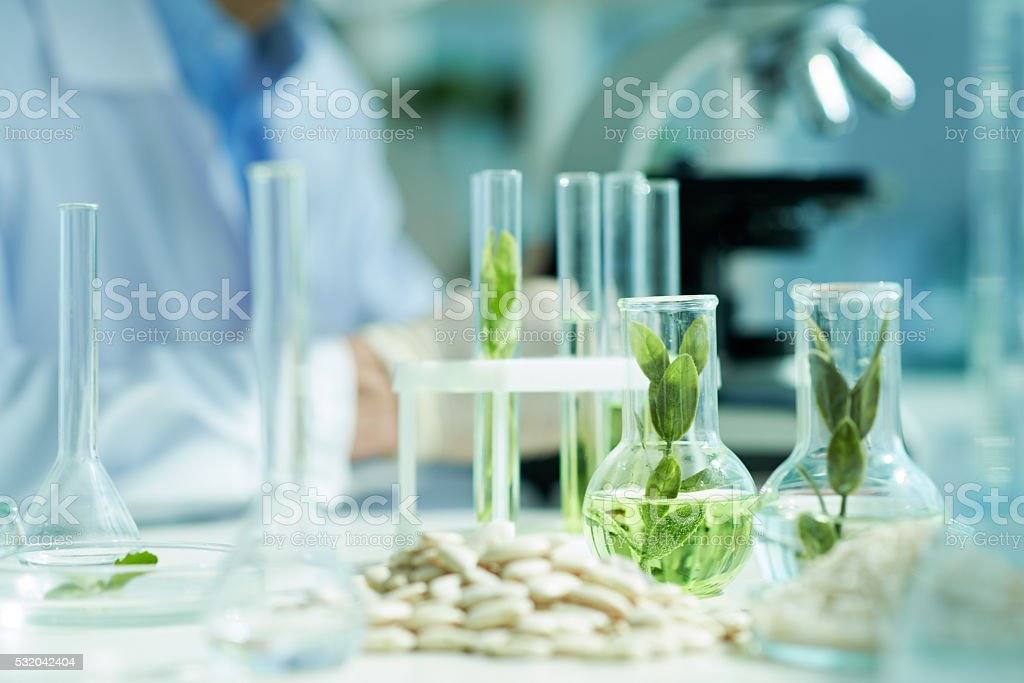 Botanical experiments stock photo