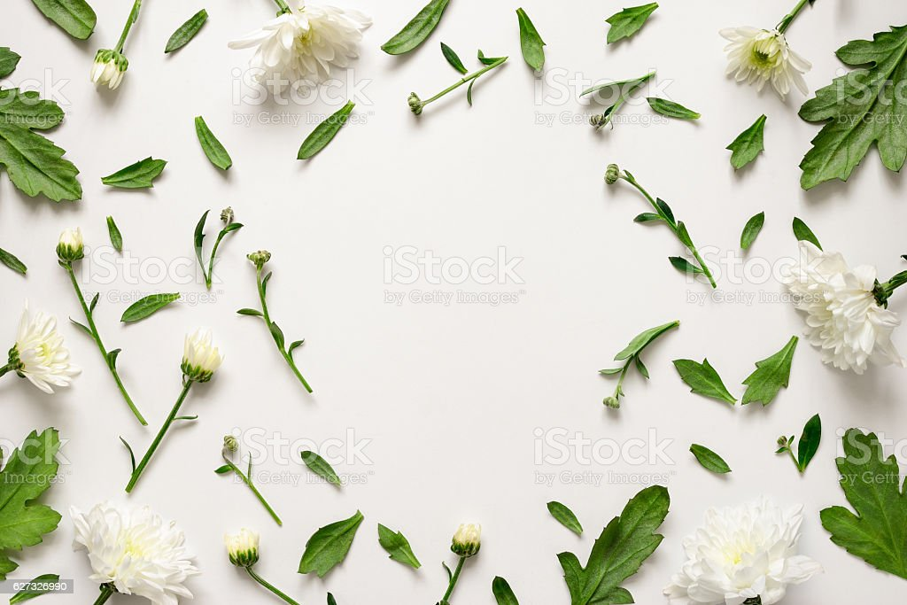 Botanical floral background stock photo