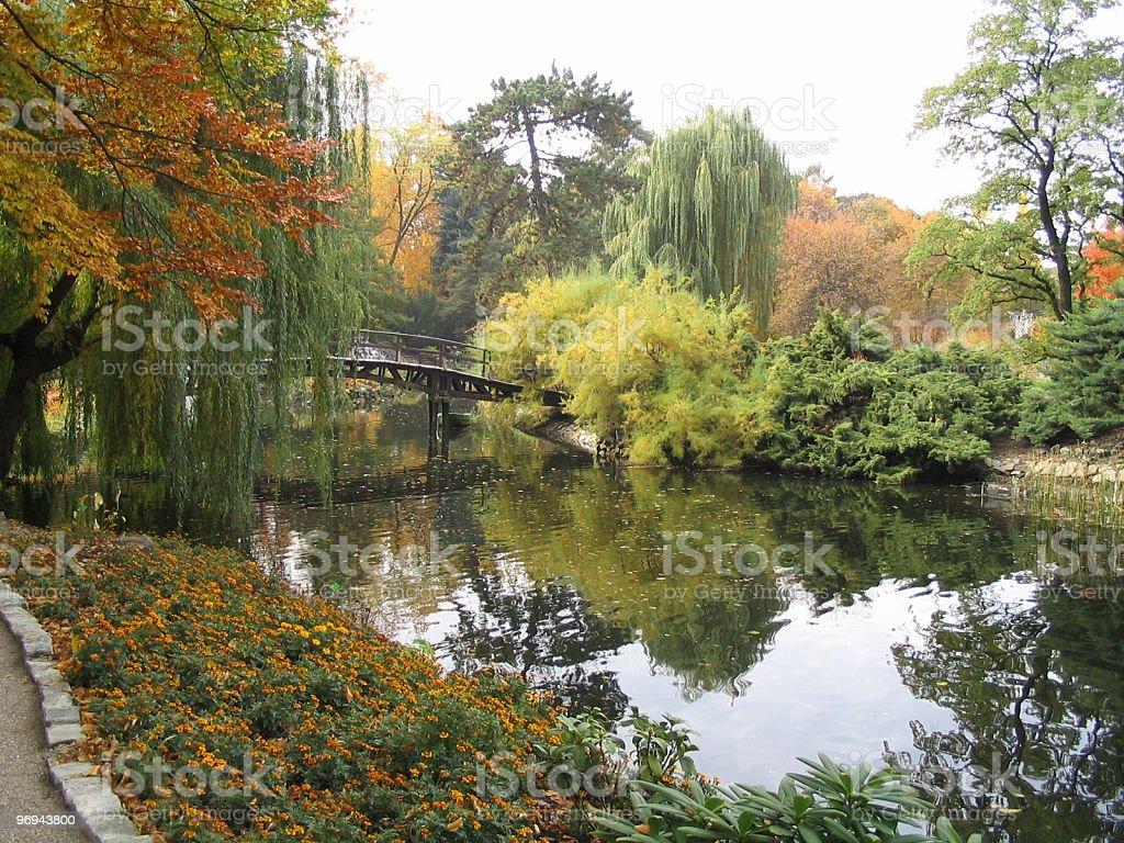 botanical garden 1 royalty-free stock photo