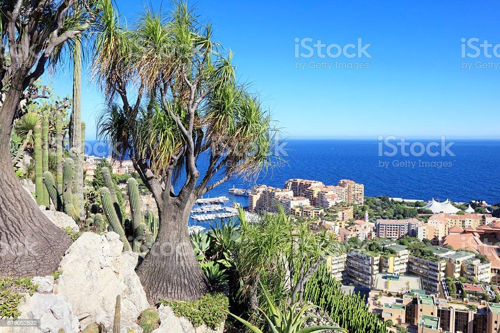 Botanical garden above Monte Carlo stock photo