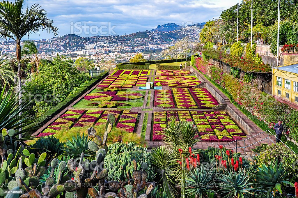 Botanical garden in Funchal, Madeira, Portugal stock photo