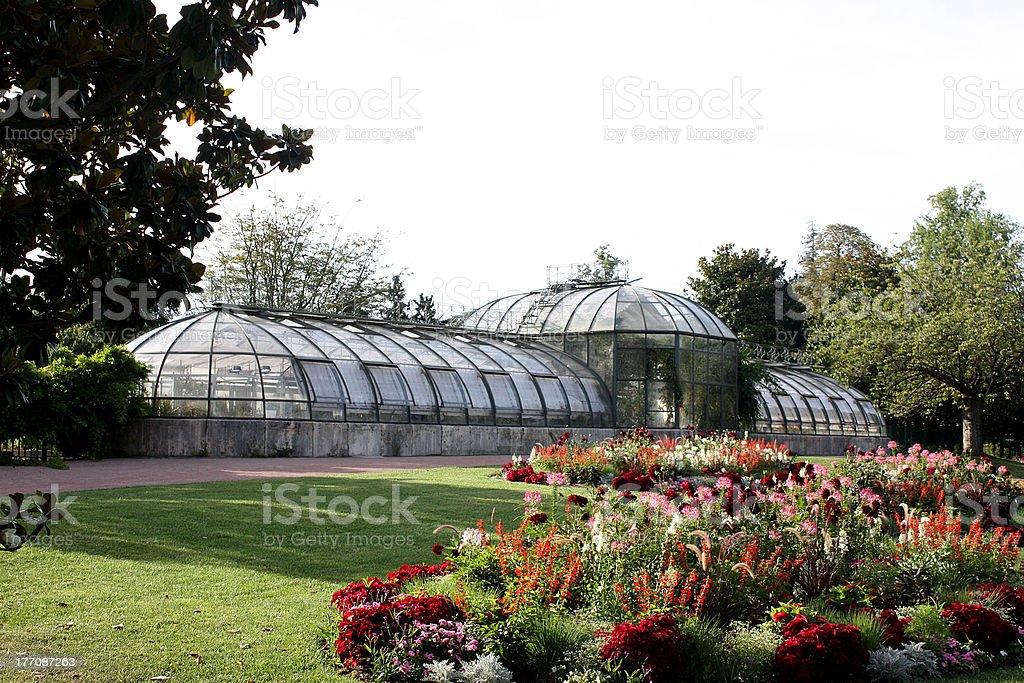 Botanical greenhouse glass stock photo