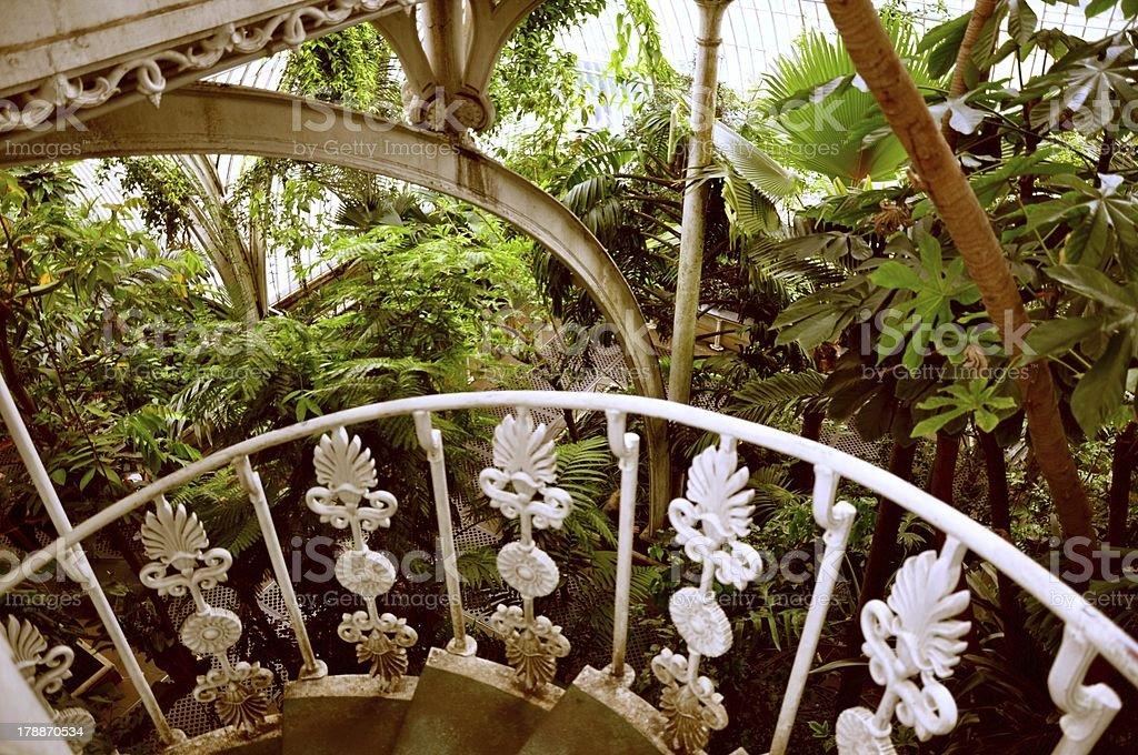 Botanical staircase royalty-free stock photo