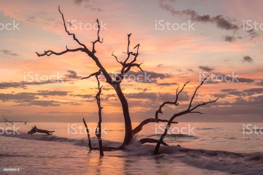 Botany Bay Beach Sunrise stock photo