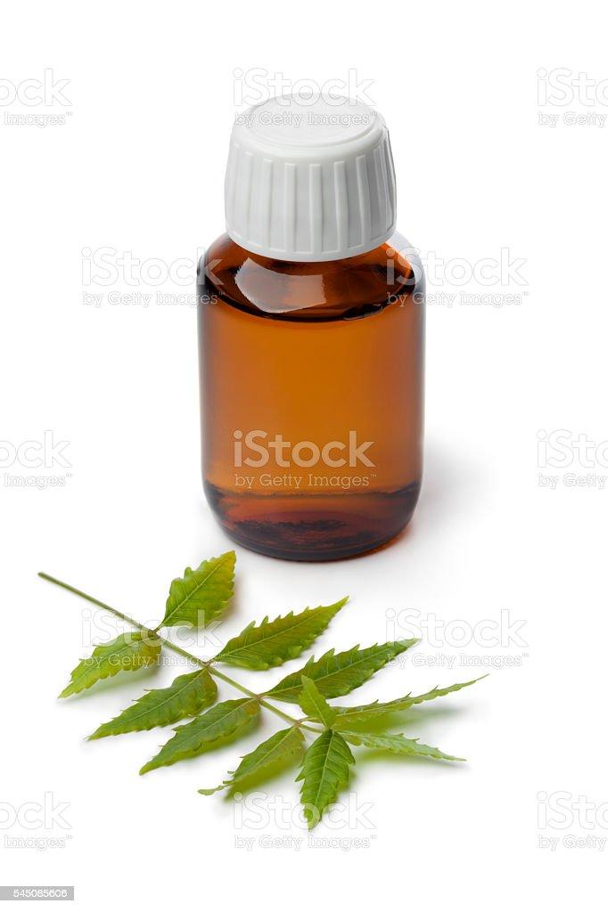 Botlle with Neem oil stock photo