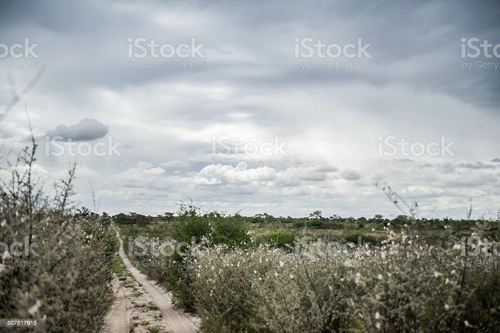 Botswana roads stock photo