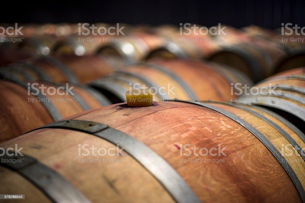 Botti di Vino stock photo