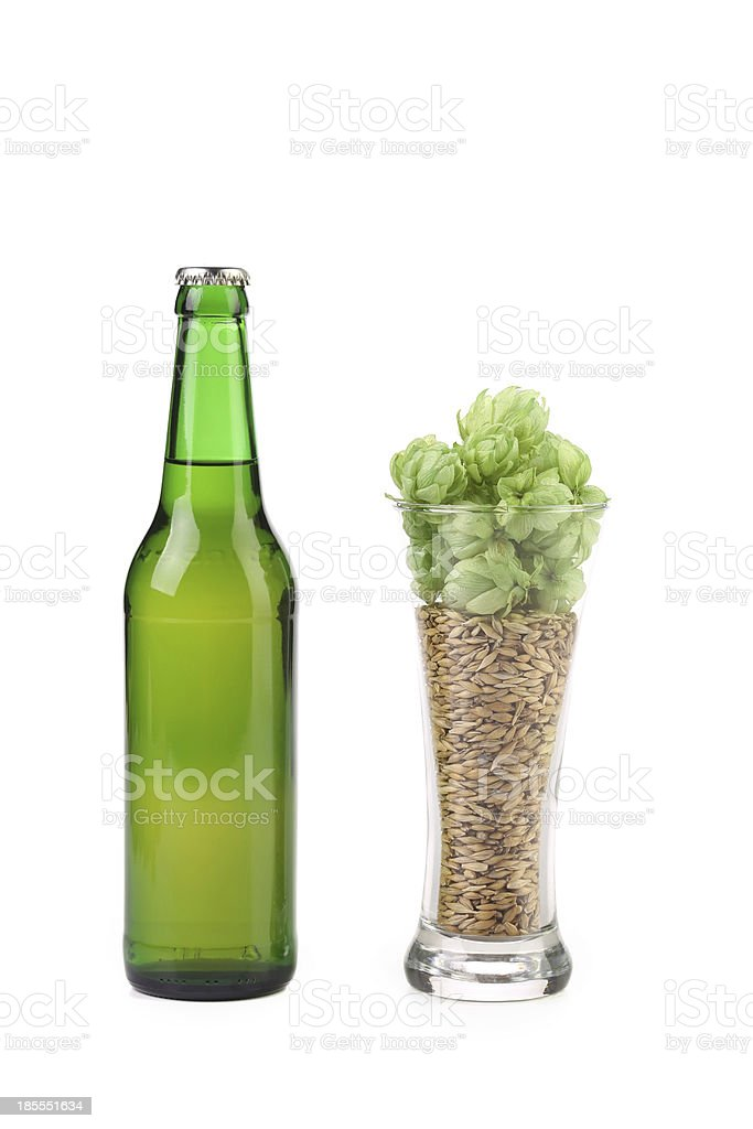 Bottle and glass of beer. royalty-free stock photo