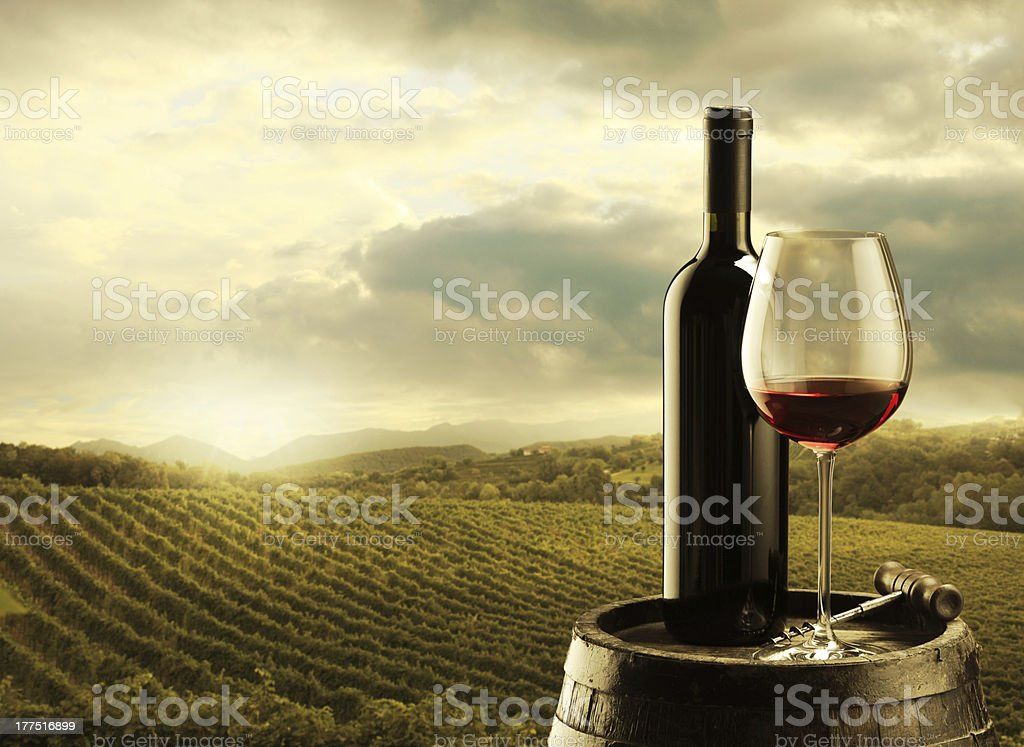 Bottle and glass of wine on oak barrel in vineyard stock photo