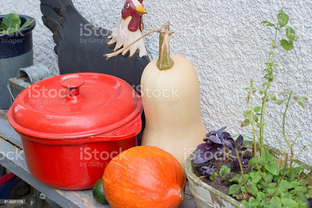 Bottle gourd and pumpkin stock photo