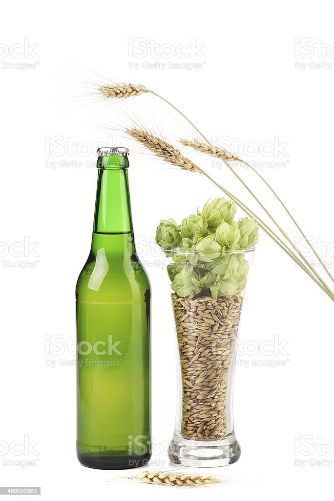 Bottle of beer and hop in glass. royalty-free stock photo