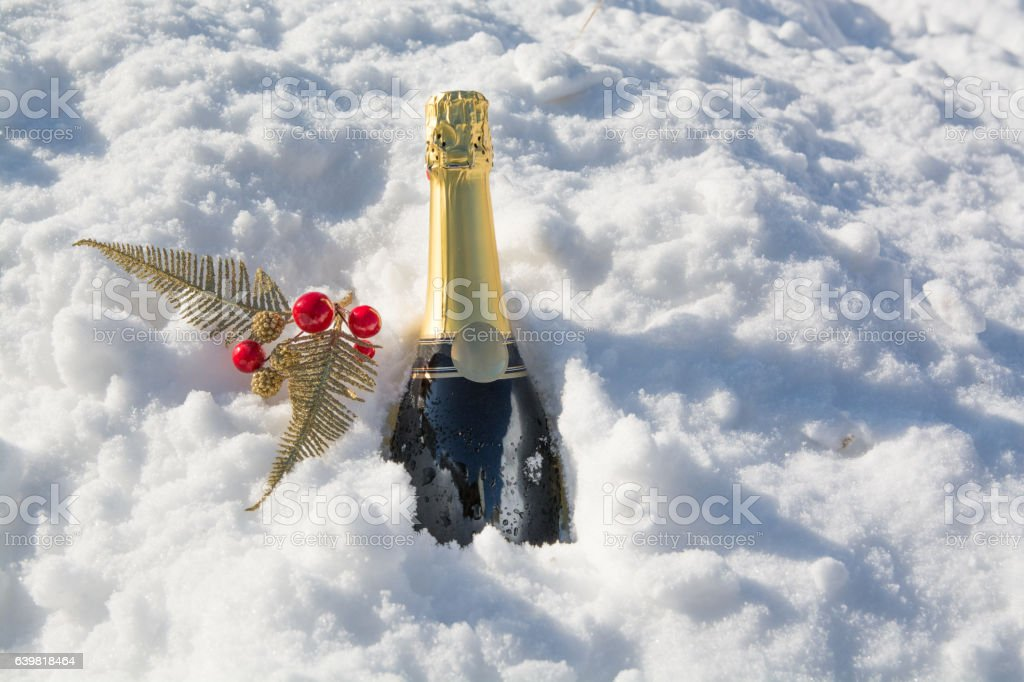 Bottle of champagne is sticking out from snow. stock photo