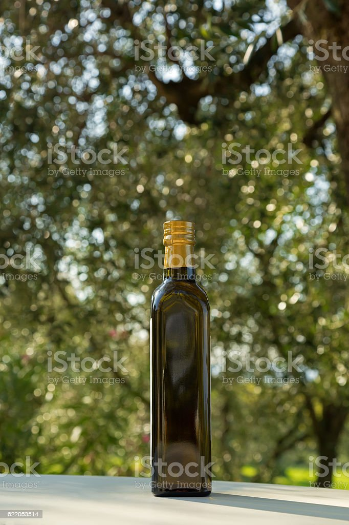Bottle of cold pressed Olive Oil with blurred Olive tree stock photo