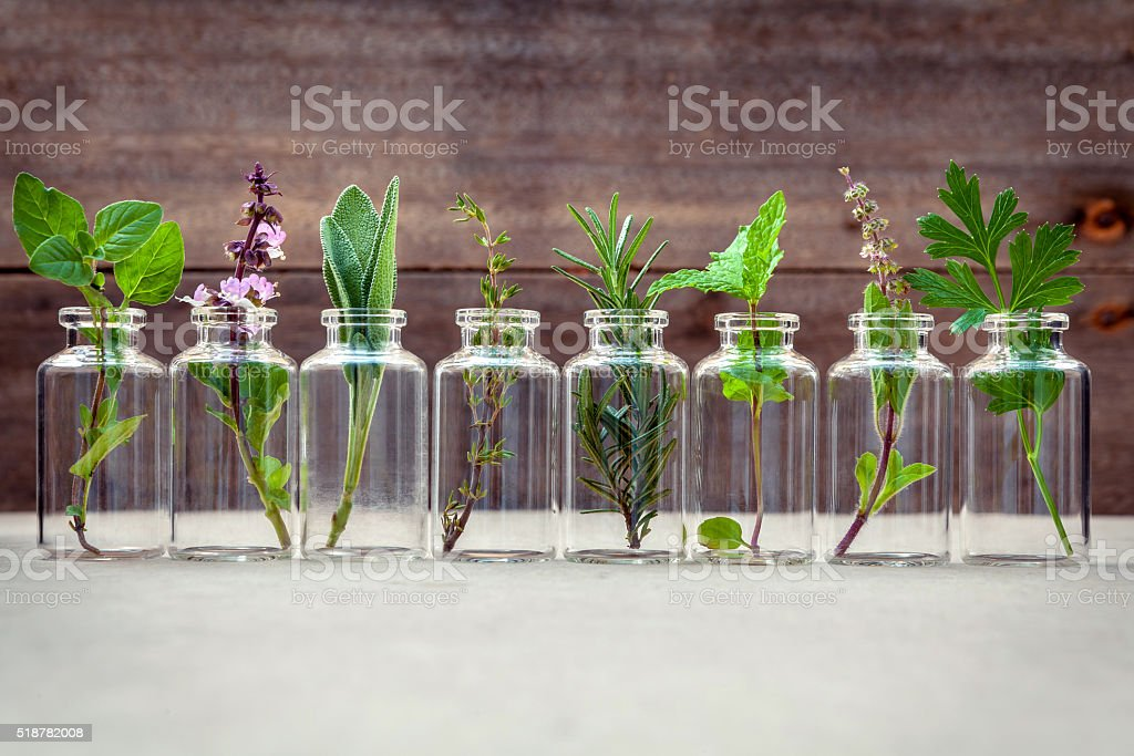Bottle of essential oil with herbs . stock photo