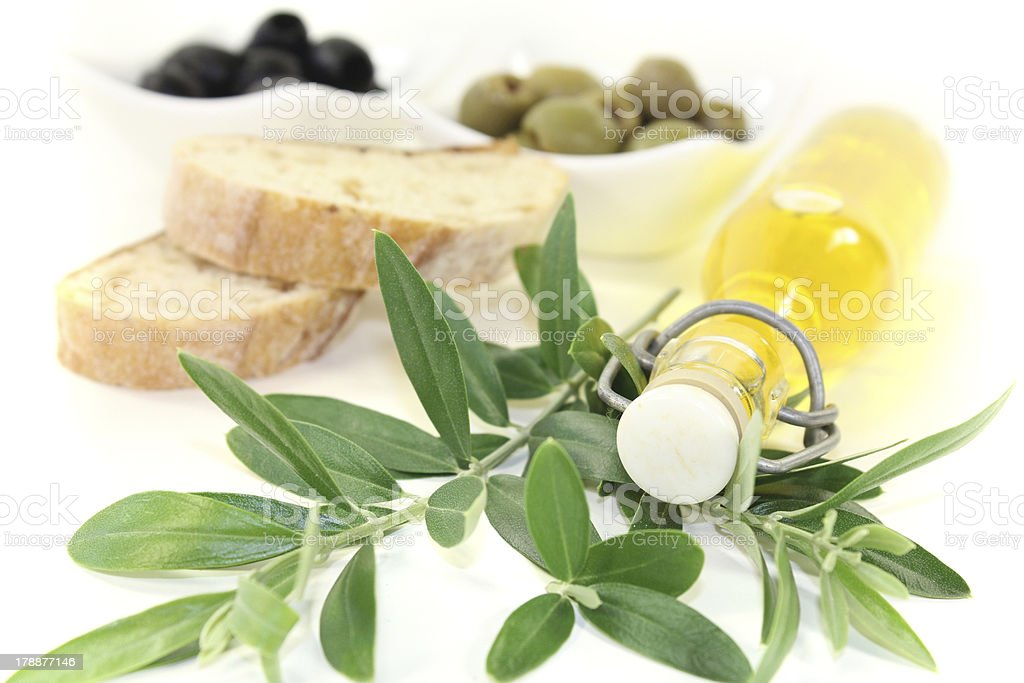 Bottle of olive oil with branch stock photo