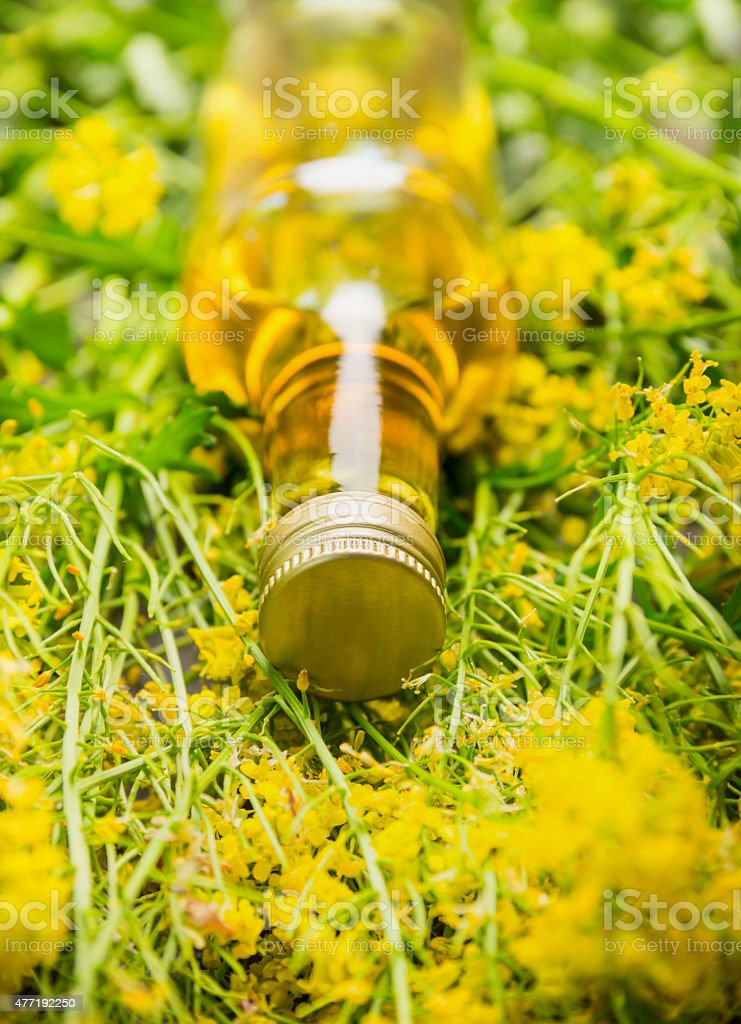 Bottle of Rape oil on fresh blossoms, close up stock photo