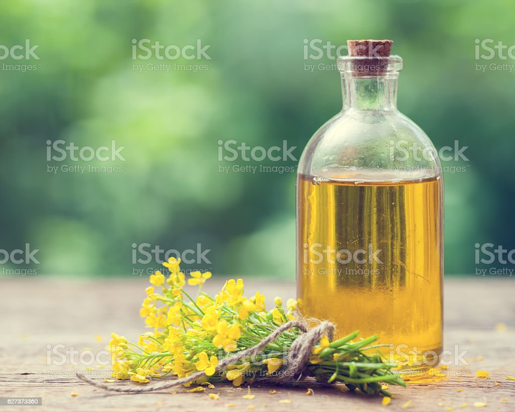 Bottle of rapeseed oil (canola) and rape flowers bunch stock photo