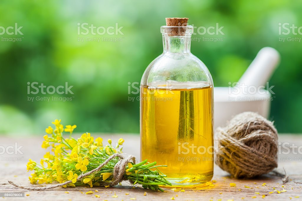 Bottle of rapeseed oil (canola) and repe flowers stock photo