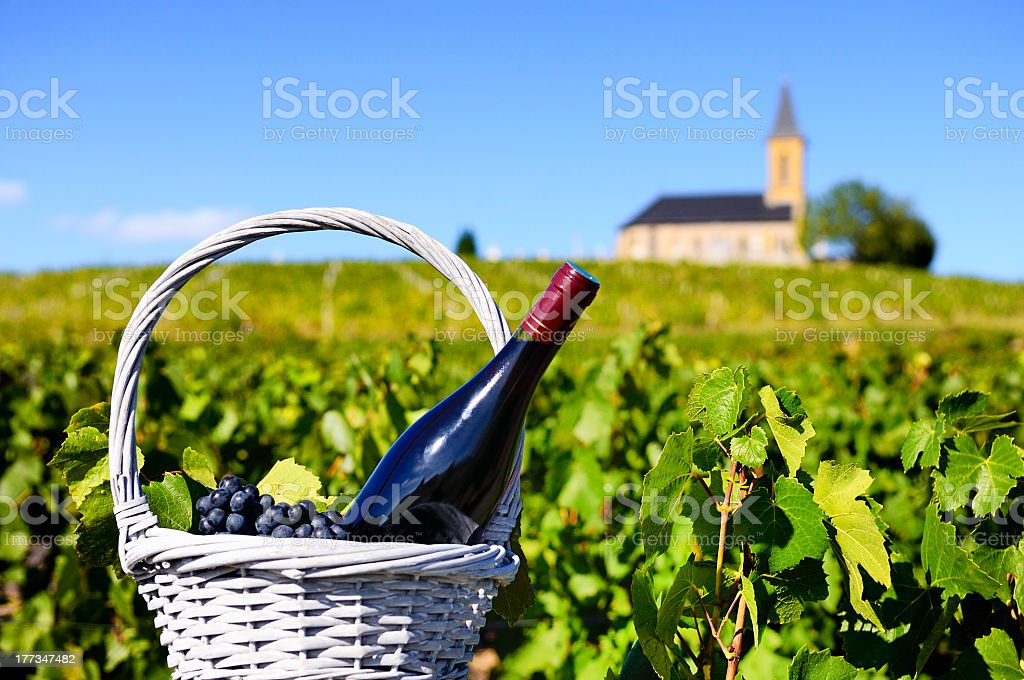 A bottle of red wine in a feel of vines with a church stock photo